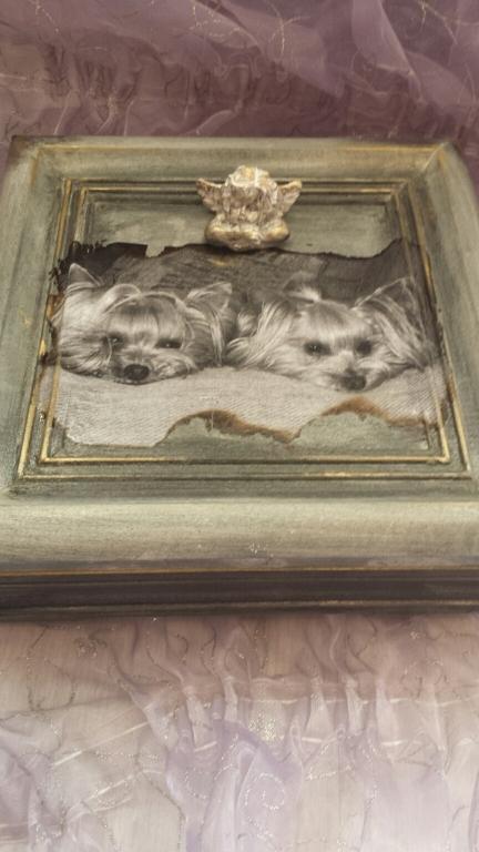 Йоркширски териер кутия за спомен